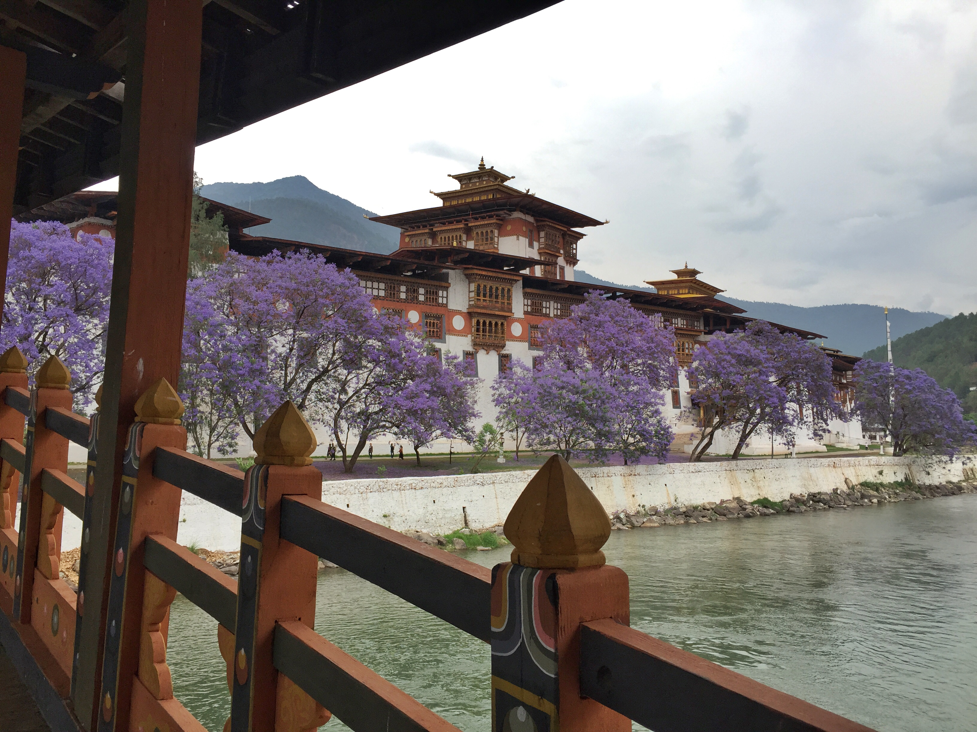 MY 10 REASONS TO VISIT BHUTAN- THE LAND OF THE THUNDER DRAGON